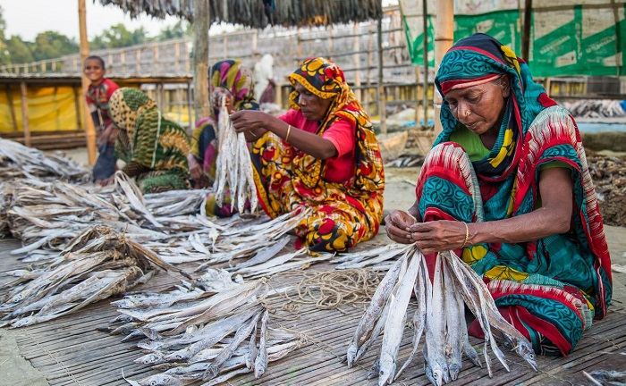 Climate change affects dry fish business