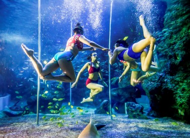 Underwater pole dancing at the Zuohai Underwater World in China