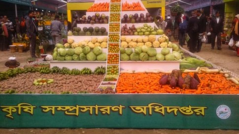 Vegetable Fair
