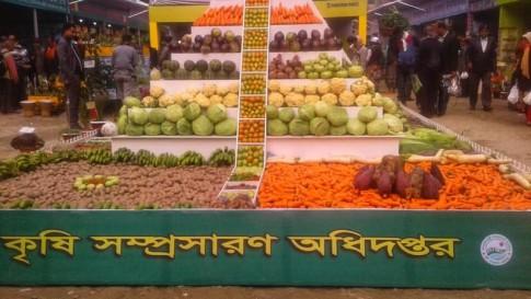 Vegetable Fair