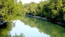 Oil-tanker sinks in Sundarban