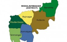 Brother kills brother in Moulavibazzar
