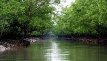 Govt bans navigation of vessels on Shela river