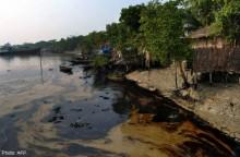 Bangladesh development \'threatens fragile Sundarbans\'