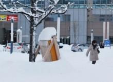 Heavy snow kills five, disrupts travel in Japan