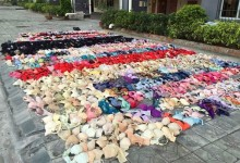 Underwear thief caught with his hoard in China