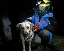 Trapped dog rescued in the dark by climber