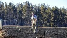 Bushfires in South Australia \'destroy dozens of homes\'