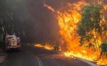 Australian firefighters to battle bushfire in heat wave