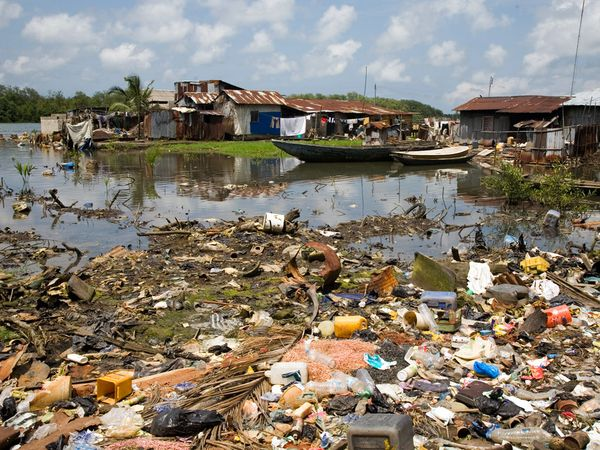 pollution and its effects on our environment We will write a custom essay sample on environmental pollution: its effects on life and its  you can read more about how the environment is affecting our.