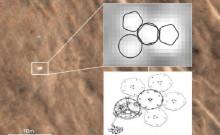 Lost Beagle2 probe found 'intact' on Mars