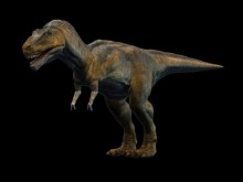The Tyrant Lizard King: Tyrannosaurus Rex