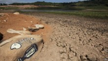 Brazil\'s most populous region facing worst drought in 80 years