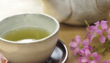 How green tea rids you of oral cancer