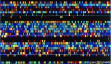 DNA screening kit given the go-ahead by US regulator
