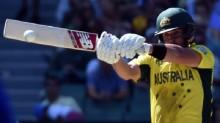 Cricket World Cup: Australia out to exploit \'absurd\' Eden Park boundaries