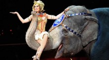 Ringling Bros circus says it will stop using elephants