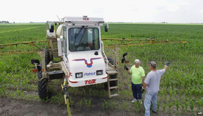 WHO Agency: Weed Killer Ingredient \'Probably\' Causes Cancer
