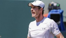 Murray seeks answers after seventh straight loss to Djokovic
