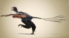 \'Bizarre\' bat-winged dinosaur discovered in China