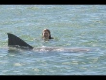 Shark attack kills woman in Maui; nearby beaches closed