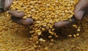 Indian Cabinet extends control order to regulate pulses, edible oil trade