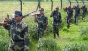 BSF returns two Bangladeshis