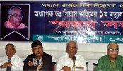 Referendum needed over local govt poll under party banner: BNP