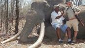 Hunter kills Africa's biggest elephant