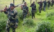 Bangladeshi shot dead by BSF at Benapole border
