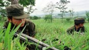 ELN rebels in Colombia kill 12 security staff