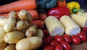 Low-fat diets not best for weight loss: study