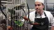 French chef named top chocolate maker