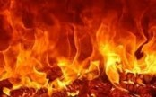 Warehouse of Globe Metal gutted by fire in Keraniganj