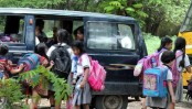School textbooks give wrong info about animals in India: PIL