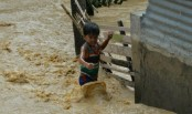690 million children at risk from climate change: UNICEF