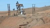 US air strike 'hits 238 IS oil trucks' in Syria
