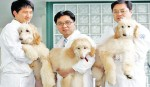 China to build largest animal cloning centre