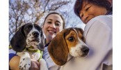 World's first test-tube puppies born in US