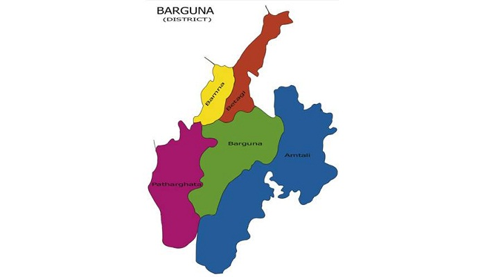 25 hurt in Barguna polling centre