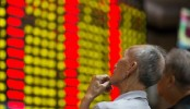 Chinese shares trading suspended again