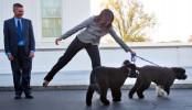 'Plot to kidnap one of Obama's dogs' stopped by police