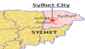 BCL leader succumbs to injuries in Sylhet