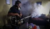 Zika virus travel warnings spread to Africa and Oceania