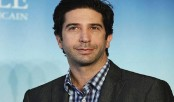 Getting fame was painful: David Schwimmer