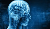 Female infants less vulnerable to brain injury