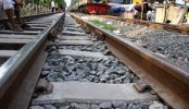 Dhaka's train service with north resumes