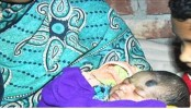 Newborn found buried in Rajshahi Lentil field