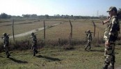 Bangladeshi shot dead by BSF in Kushtia