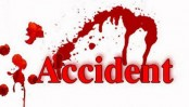 Garment worker killed in Sherpur road crash